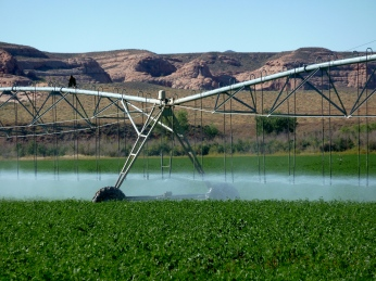 A sprinkler delivering water from the Green River to a field in Utah. Photo: Brent Gardner-Smith/Aspen Journalism