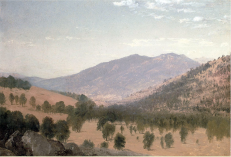 """Bergen Park"" was painted by John Frederick Kensett circa 1870. The painting illustrates the open, spatially-variable structure of a ponderosa pine stand with an open understory typical of some Front Range forests at that time. (Bergen Park, at an elevation of 7800 ft., is located near Evergreen, CO, 25 miles west of Denver.) via Rocky Mountain Research Station"