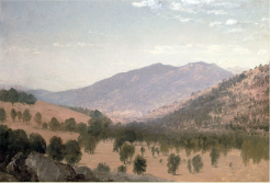 """""""Bergen Park"""" was painted by John Frederick Kensett circa 1870. The painting illustrates the open, spatially-variable structure of a ponderosa pine stand with an open understory typical of some Front Range forests at that time. (Bergen Park, at an elevation of 7800 ft., is located near Evergreen, CO, 25 miles west of Denver.) via Rocky Mountain Research Station"""