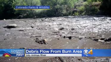 Screen shot of Animas River debris flow July 2018 aftermath of 416 Fire (CBS Denver).