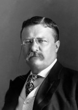 Theodore Roosevelt around 1904. By Pach Bros. - This image is available from the United States Library of Congress's Prints and Photographs divisionunder the digital ID ppmsca.35645. See Commons:Licensing for more information., Public Domain, https://commons.wikimedia.org/w/index.php?curid=71136734