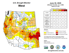 West Drought Monitor June 30, 2020.